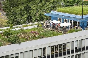 Etancheite De Terrasse En Beton Prix Et Comment Faire